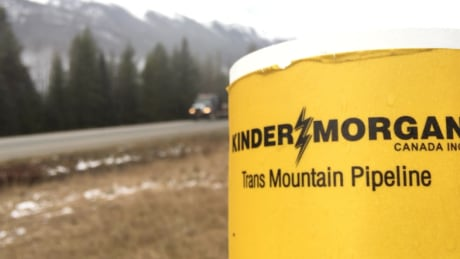 Trans Mountain IPO to proceed despite B.C. Green-NDP deal