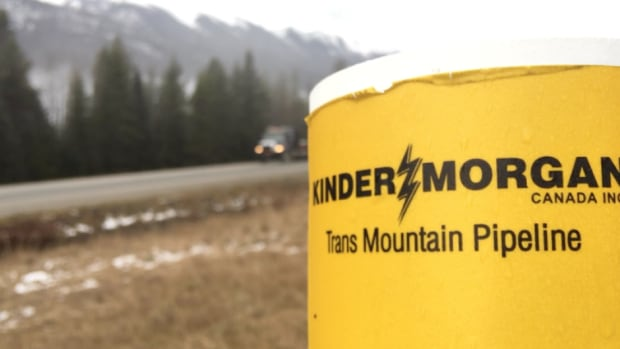Kinder Morgan Says Trans Mountain Project Depends On IPO