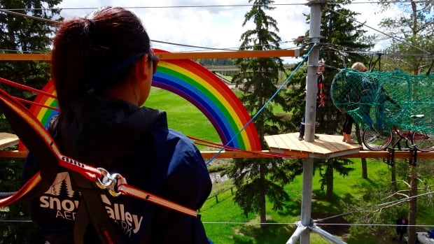 More than 800 people strapped on a harness and scaled the new Snow Valley Aerial Park in the first three days it was open.
