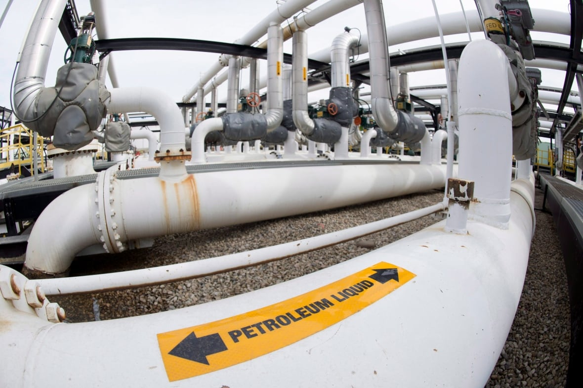 Alberta to restrict oil, gas to British Columbia in Canada pipeline row