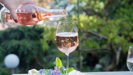 Stop and smell the rosé this summer with these 4 wine picks