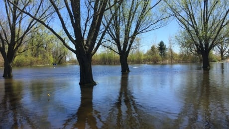 Ontario cuts conservation authority funding for flood programs