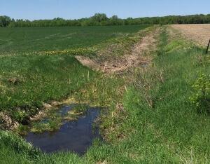 drainage ditch where Mavis Otuteye died