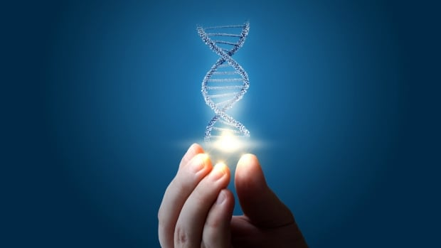 DNA light
