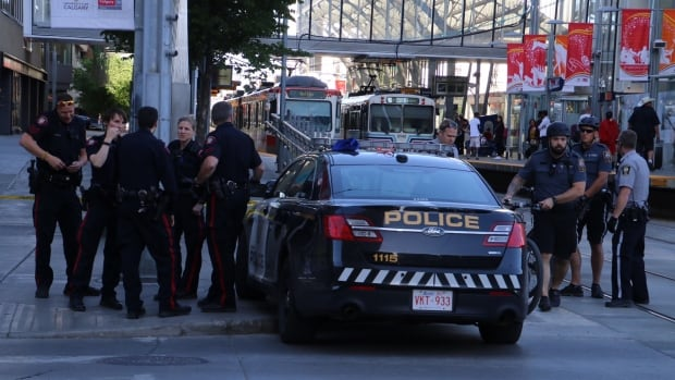 Calgary police charge man in Friday's fatal LRT stabbing