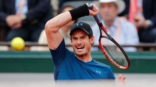 Murray downs Del Potro, French women feud