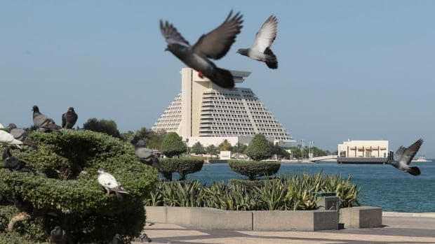 Pigeons take flight in Doha, Qatar on Monday. Arab nations including Saudi Arabia and Egypt have cut ties with the country, accusing it of supporting extremism, in the biggest diplomatic crisis to hit the region in years.