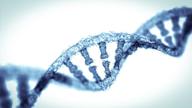 CRISPR — a gene editing tool — allows scientists to remove or insert sequences into the genes of any living thing.