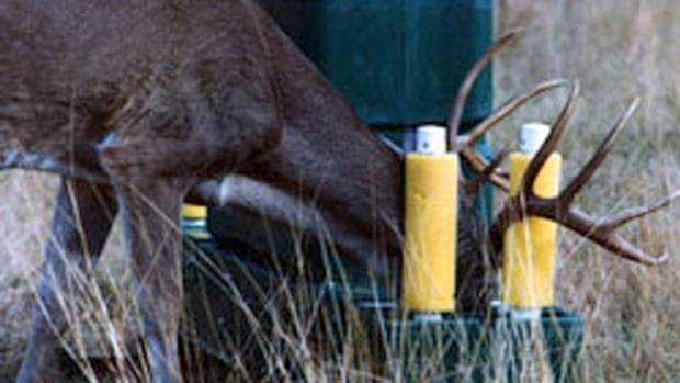 Lunenburg Nova Scotia >> Deer bait stations could fight Lyme disease in New ...
