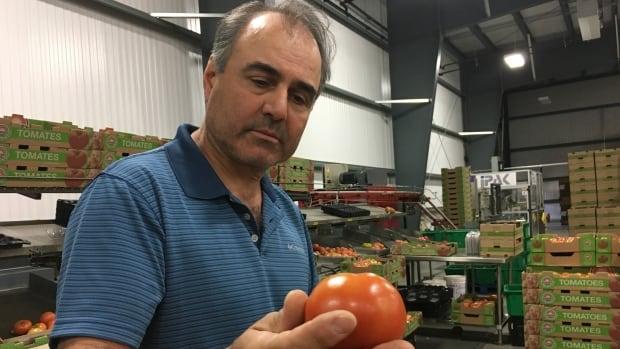 Greenhouse operator Gerry Mastronardi says the $15 minimum wage will kill his business.