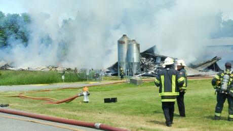 abbotsford chicken farm fire