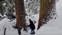 forest snowshoe