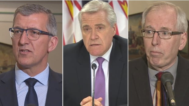 All three parties in Newfoundland and Labrador face leadership challenges and pressure from forces that may be outside their control.