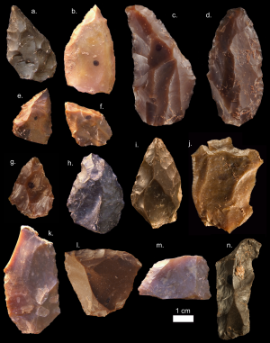 Middle Stone Age tools