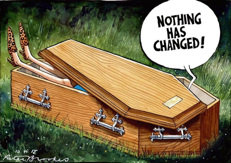 peter brookes theresa may coffin