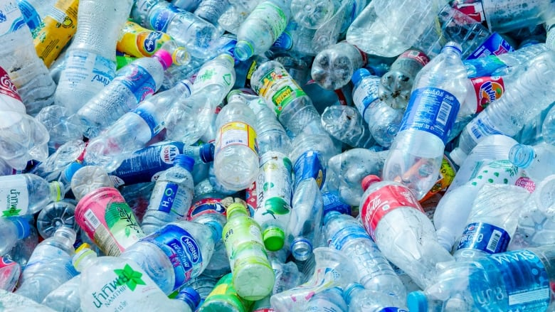 Scientists make plastic from carbon dioxide and sugar ...