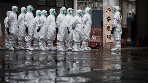 Volunteers wearing protective clothing take part in a chicken cull demonstration as part of an emergency response exercise in Hong Kong on May 21, 2017.