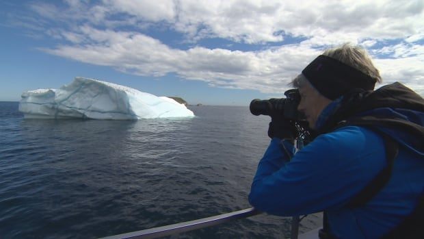 Wendy Hill, a tourist from Ontario, captures a shot of a seabird perched on an iceberg south of St. John's.