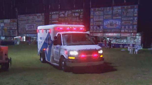 Two men were hit by a light standard at the Beaches Rib Fest on Friday night, police say.