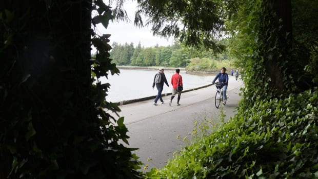 The tours, provided by The Stanley Park Ecology Society, show an often overlooked side to the park.