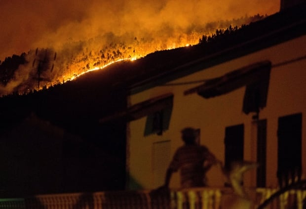 Portugal wildfire leaves 43 people dead