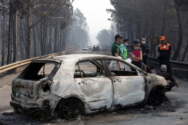Portugal Forest Fires