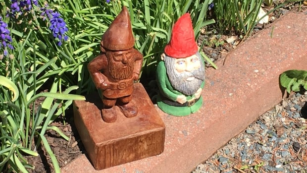 A total of 40 gnomes and their houses will be scattered throughout the Memorial University Botanical Garden.