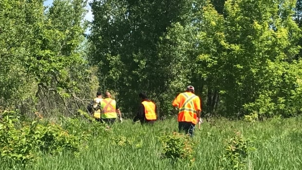 Volunteers search for clues into Jennifer Catcheway's 2008 disappearance at Dakota Tipi First Nation near Portage la Prairie on Monday.