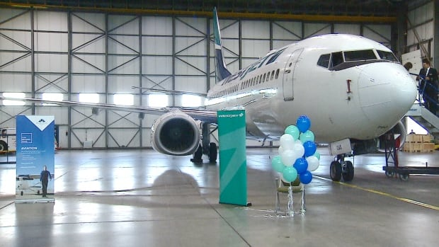 An agreement between WestJet and the Mount Royal University aviation program will allow students access to pilot mentors and pricey simulators.