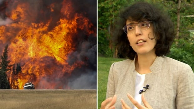 Maleknaz Nayebi, a PhD candidate at the University of Calgary's Schulich School of Engineering, was the lead researcher in a project that used specialized software to analyze nearly 70,000 tweets sent by affected residents during the Fort McMurray wildfire of 2016.