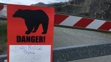 Bear Mauling Teen Dies