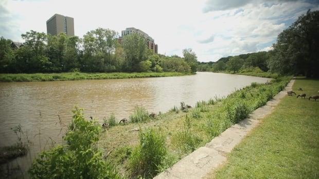 Étienne Brûlé Park at Humber River
