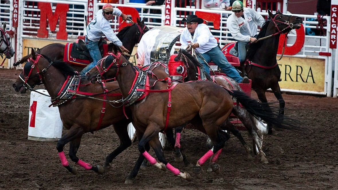 Watch The Calgary Stampede Rangeland Derby Final Amp Day 10