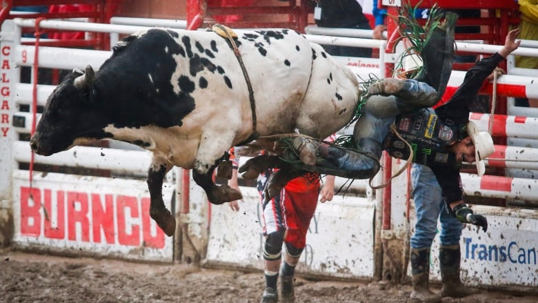 Watch The 2018 Calgary Stampede Cbc Sports