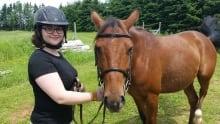 MIlo the horse on MacDonald Road, PEI