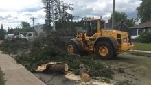 Red Deer cleanup 2