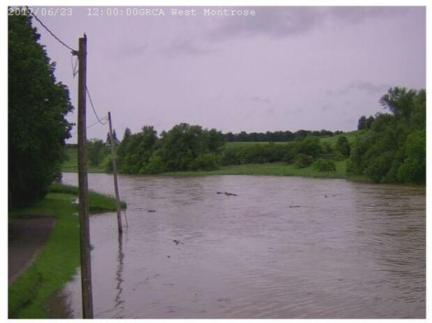 west montrose river camera