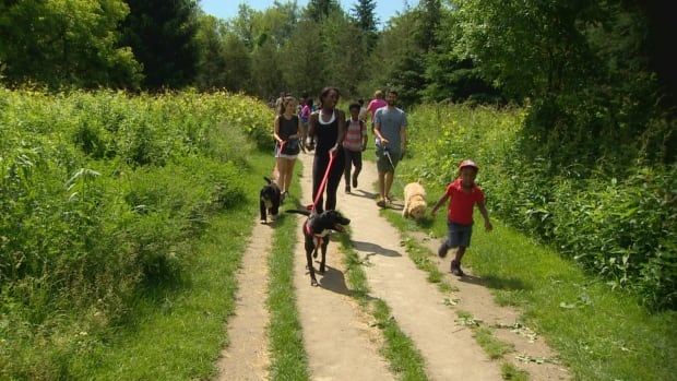Members of the Black Daddies Club go on a five-kilometre hike at Rouge National Urban Park. The hike, one of a series this summer, is designed to celebrate the organization's tenth anniversary, nurture a love of nature in children and build community.