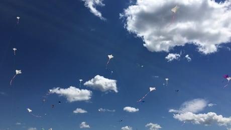Kite festival Swift Current