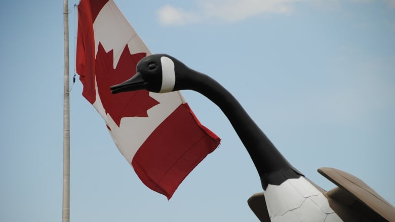 The new bronze Wawa Goose, the third to stand alongside the TransCanada Highway outside the small northern Ontario town, to be unveiled Canada Day 2017.
