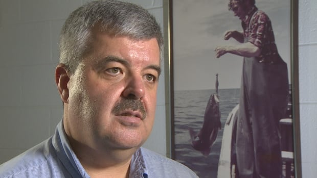 Icewater president Alberto Wareham says the Arnold's Cove fish plant relies on cod from the 3PS offshore catch.