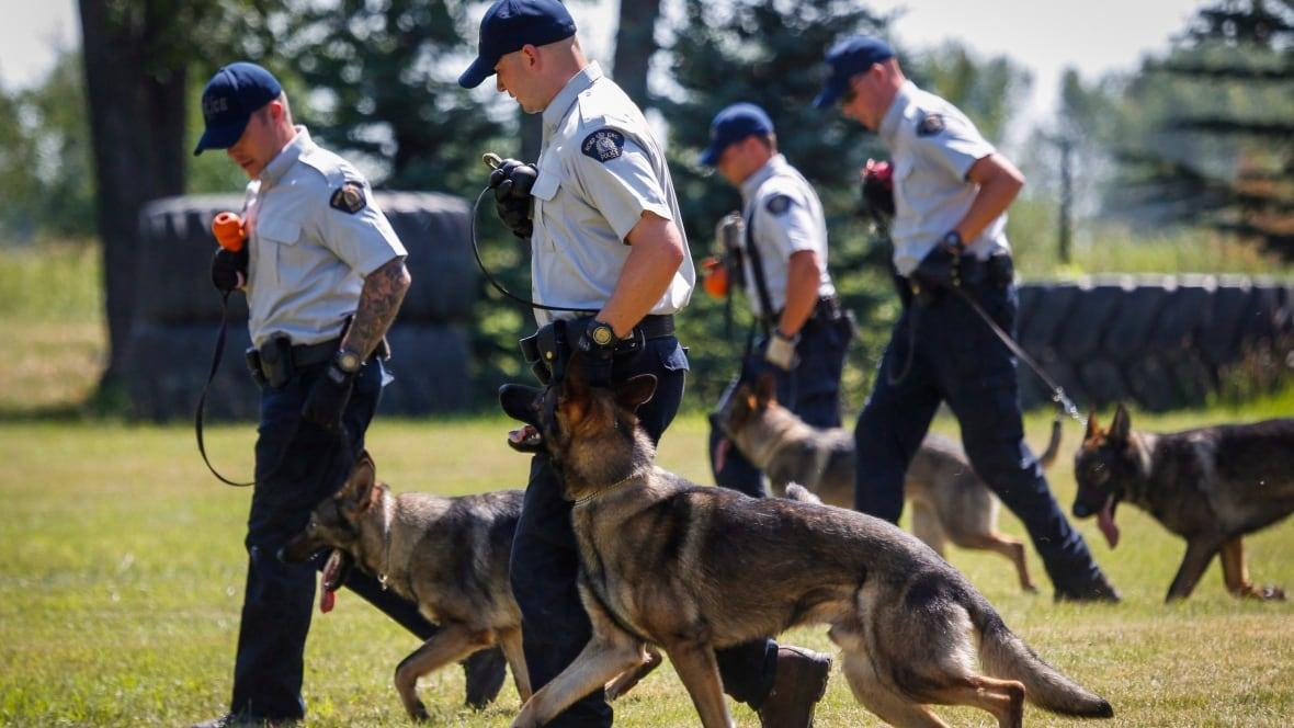 Police Dog Training Edmonton