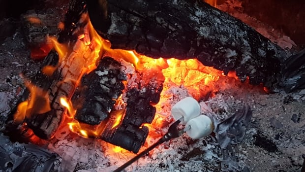 A heat wave has prompted Ottawa Fire Services to ban all open-air fires in the city.