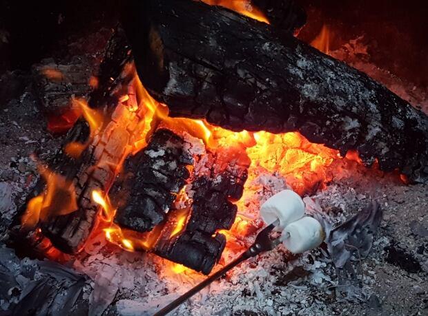 Campfire camp fire marshmallows log burning