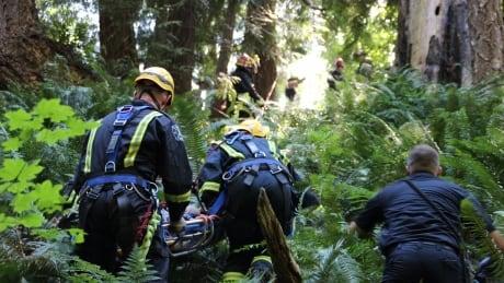 Surrey ravine rescue