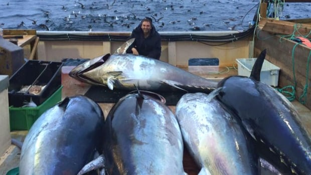 Winston Pitcher and his haul of bluefin tuna.