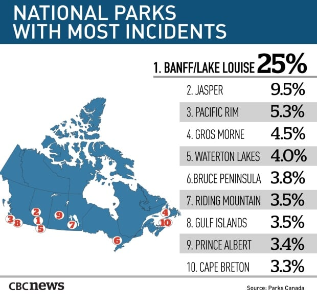 """common infractions in canada national park""的图片搜索结果"