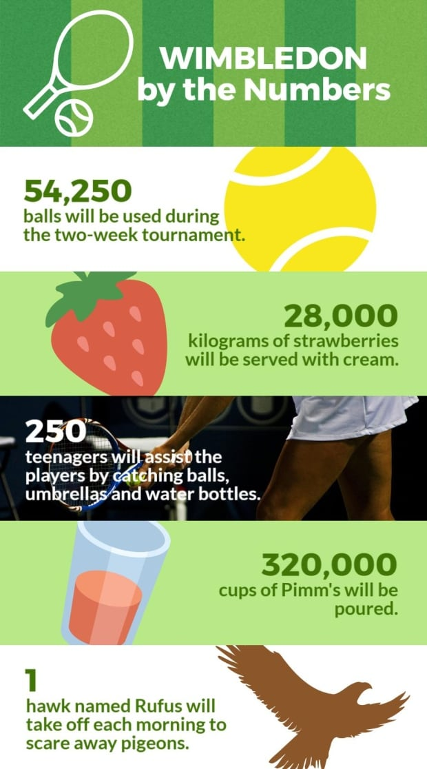 Wimbledon Numbers Infographic