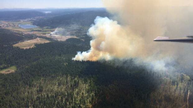 A fire burns near 100 Mile House, B.C. on July 6, 2017.