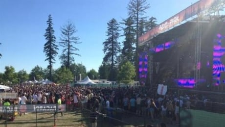 Fvded-In-The-Park-2015